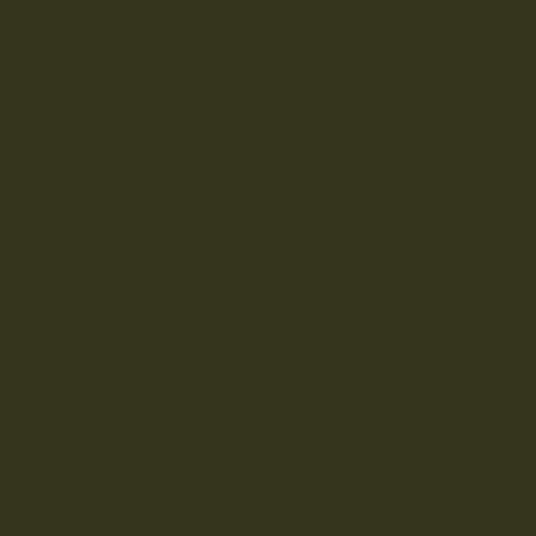 662-166 - Deep Forest-Acorn