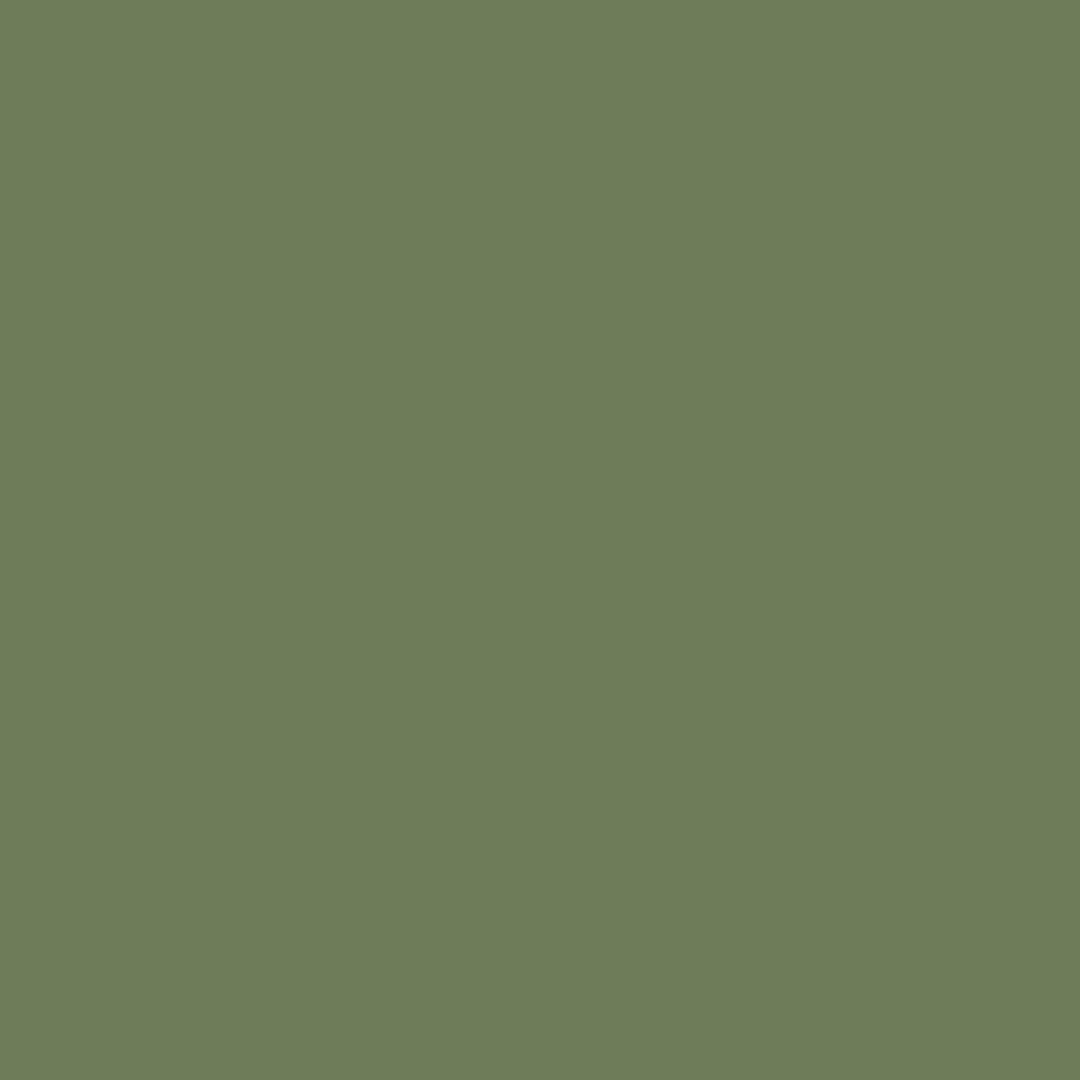 621 SPRUCE GREEN