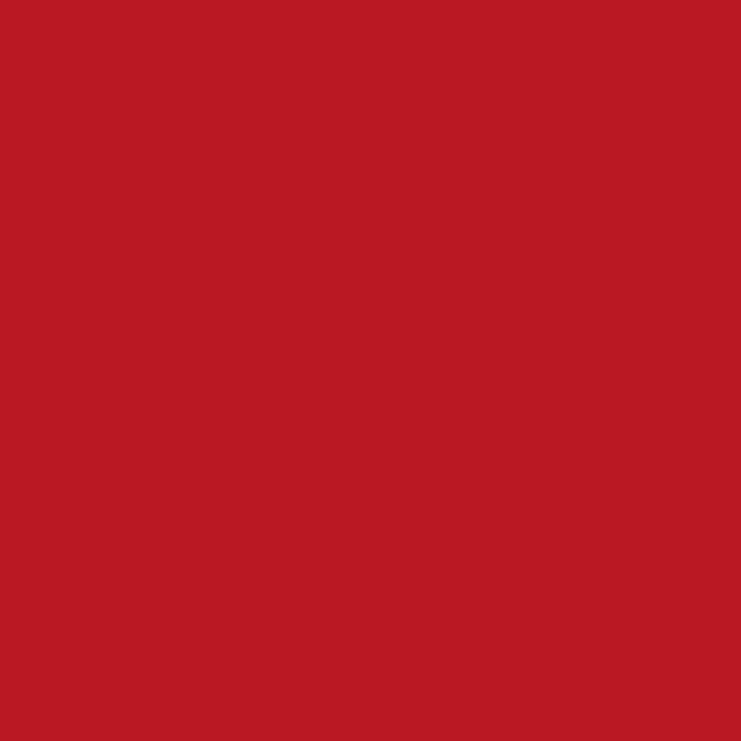 334 - TRUE RED