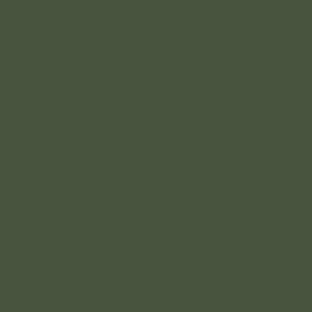 621-221 - SPRUCE GREEN-CLAY