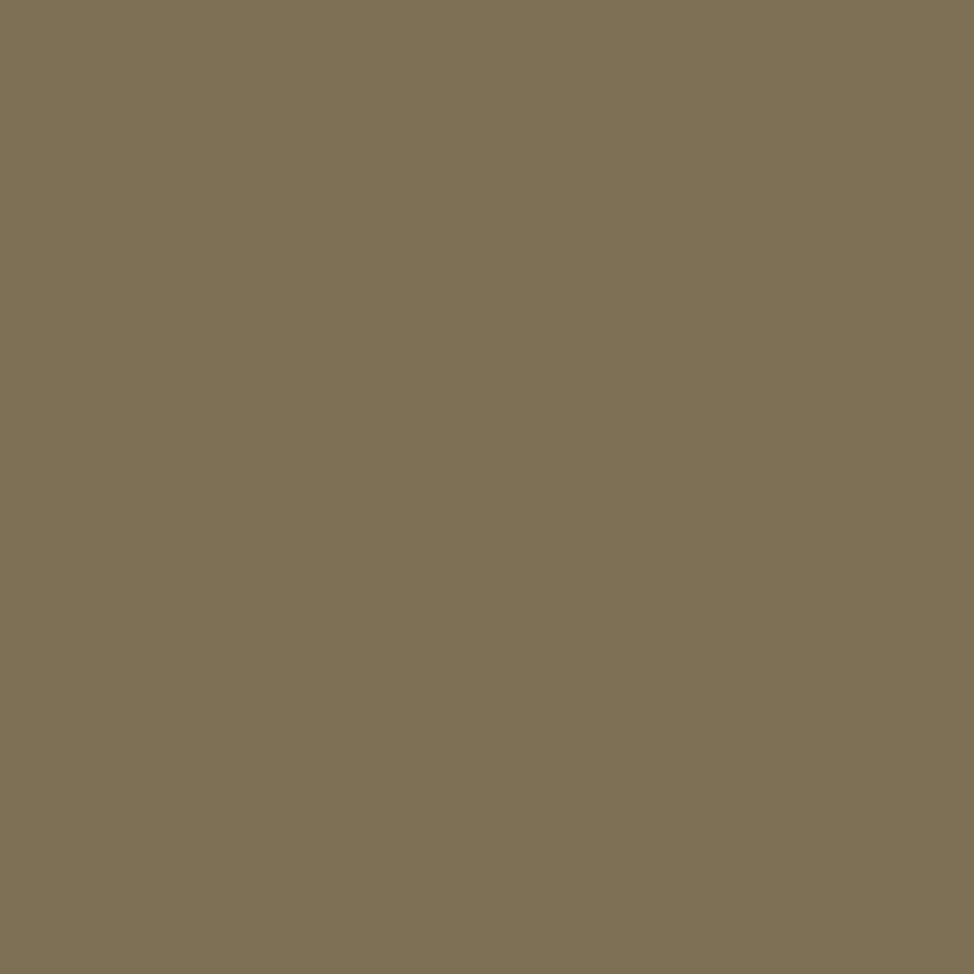 627 - LICHEN GREEN